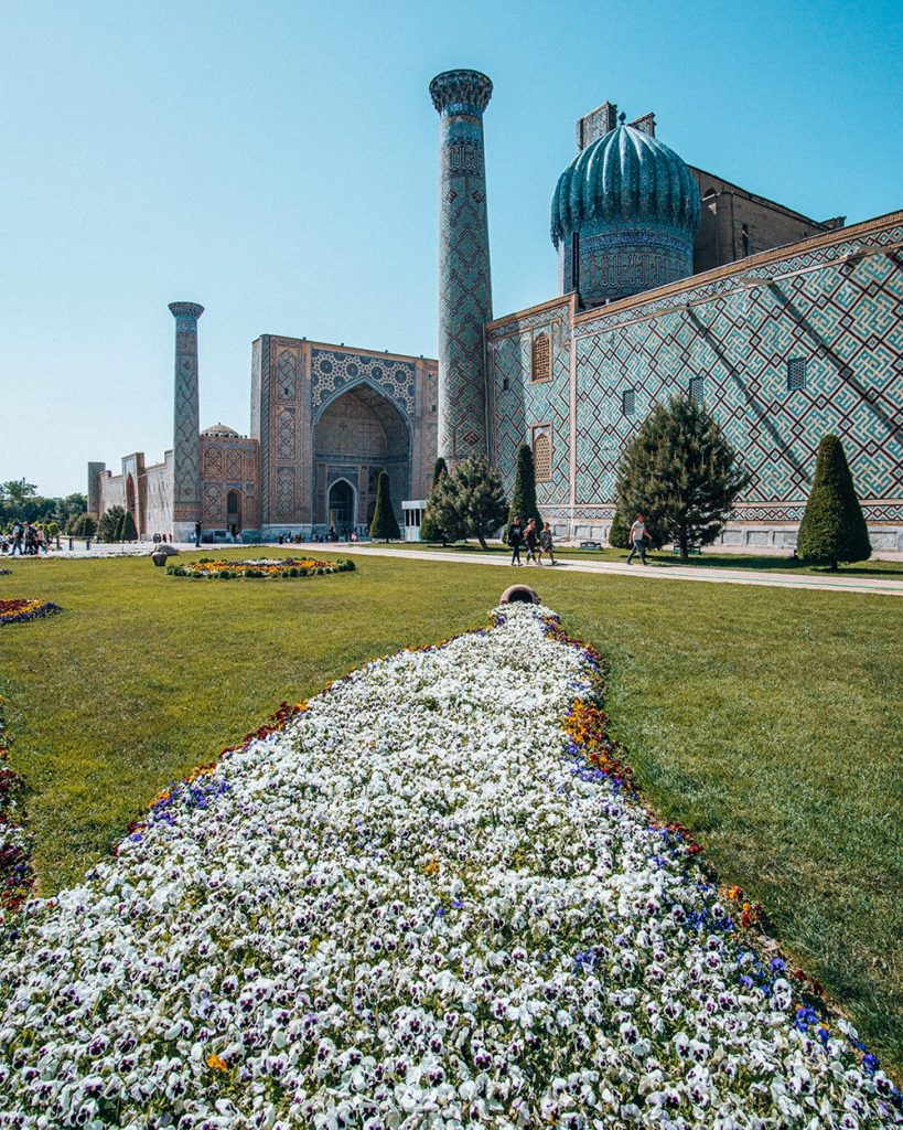 flowers on grass at registan square in samarkand uzbekistan