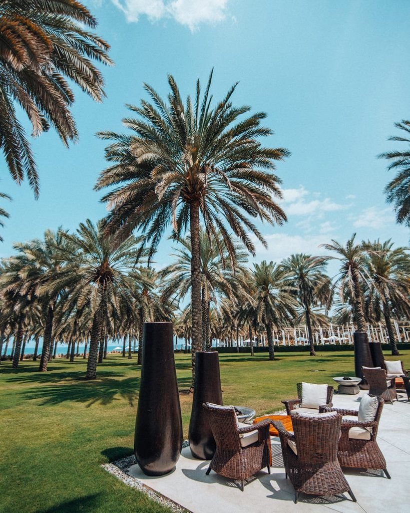 palm trees at the chedi muscat hotel resort