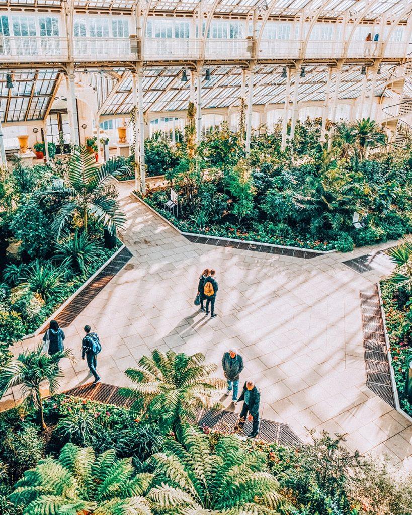 palm house in kew gardens in london