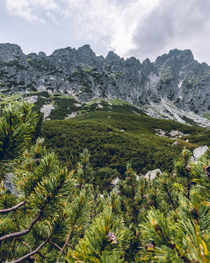 the view of the high tatras mountains in slovakia