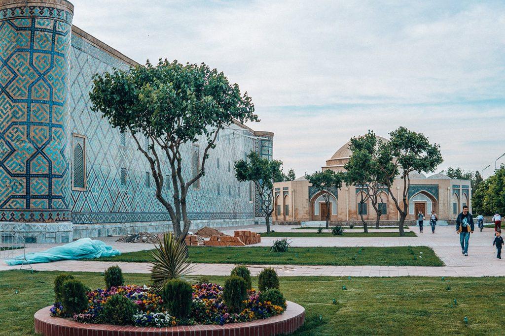 plants near registan in samarkand uzbekistan