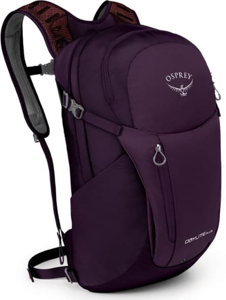 REI Daypack for Hikers