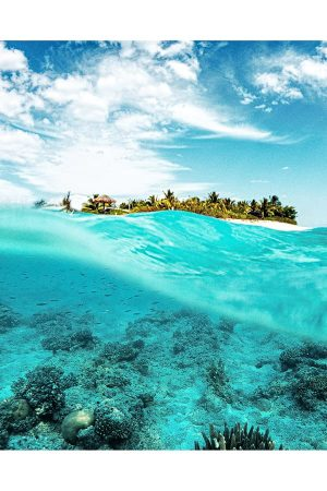 Swimming in the Ocean, One of the Best Things to do in Nadi, Fiji