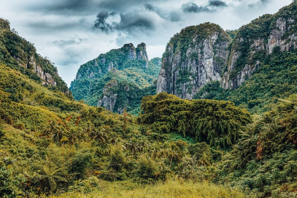 A Mountain Surrounded By Greenery in Fiji