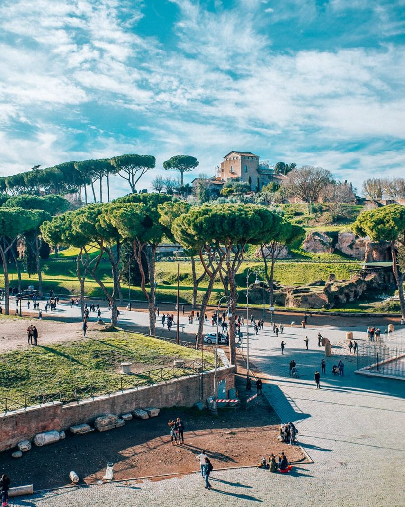 View From the Colosseum in Rome, Italy