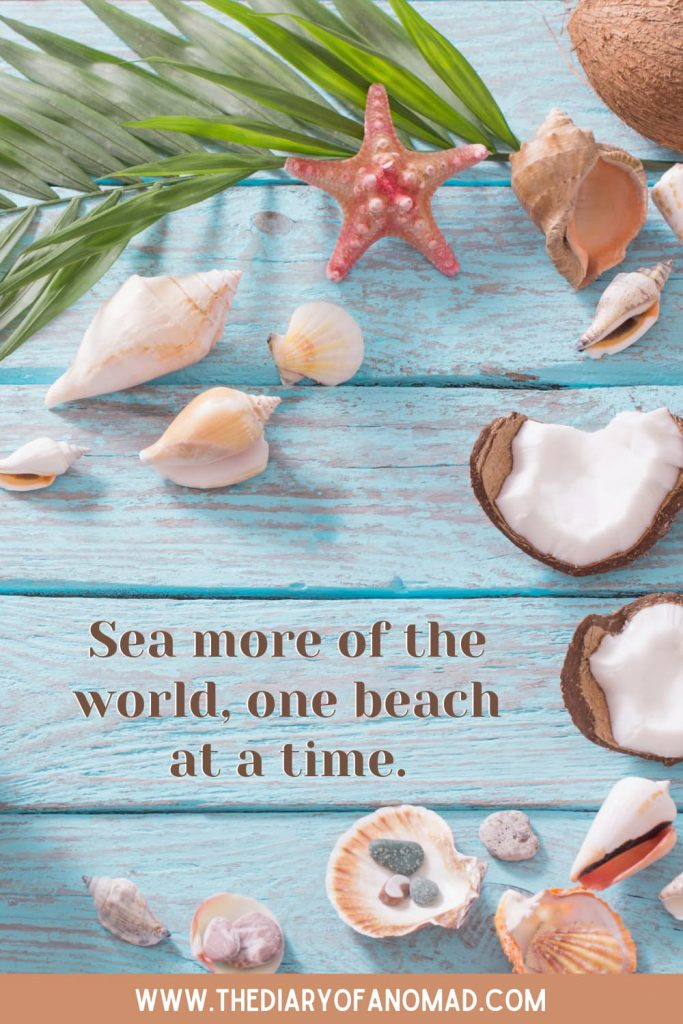 An Inspiring Beach Quote Surrounded By Coconuts and Starfishes