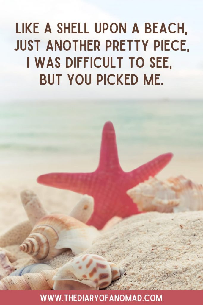 A Red Starfish on the Sand