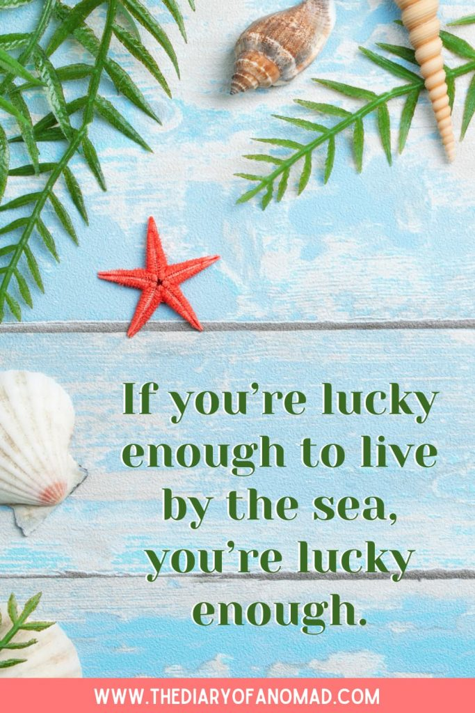 A Quote About Life on the Beach
