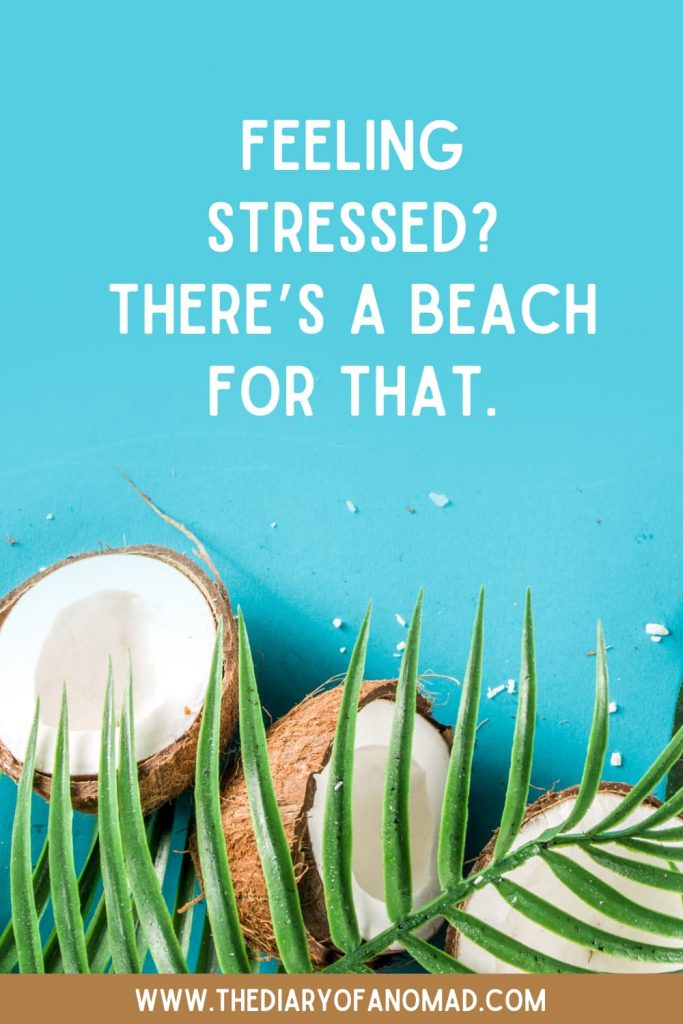 A Relaxation Beach Quote Surrounded By Palm Tree Leaves and Coconuts