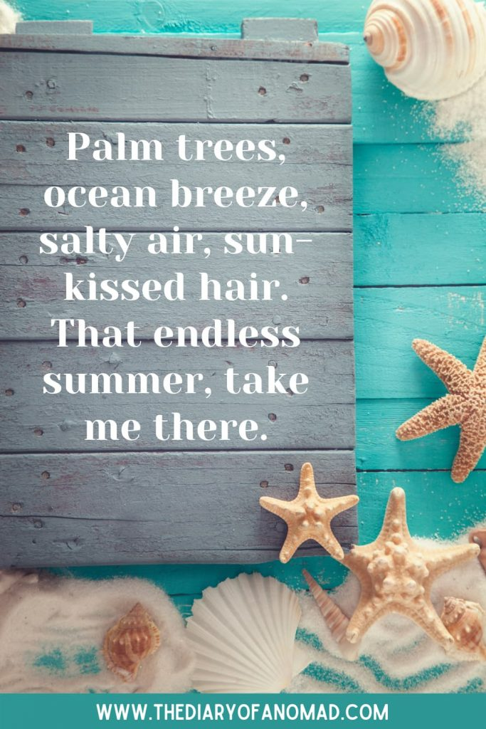 Starfishes and Seashells Next to a Message About Summer at the Sea
